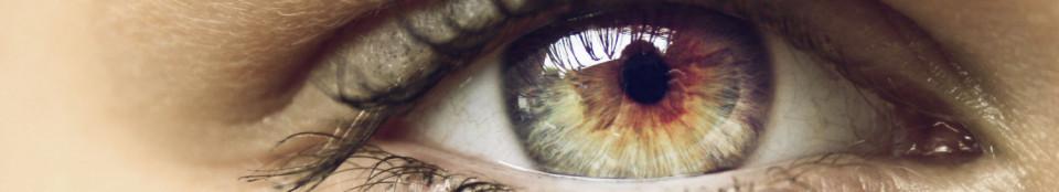 Augenarzt Dr. med. Annette von Langenthal
